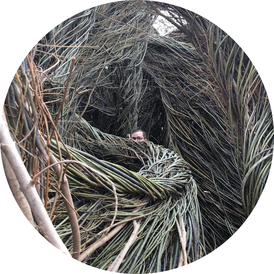 me hiding in some stickwork